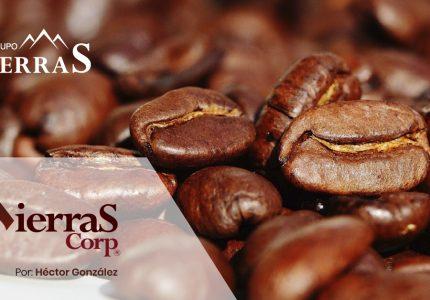 ¿Estás interesado en exportar café?